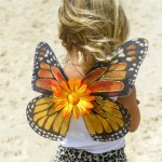 Custom Monarch Butterfly for kids , 9 Monarch Butterfly Wings Costumes In Butterfly Category