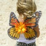Custom Monarch Butterfly for kids , 9 Monarch Butterfly Wings Costumes In Butterfly Category