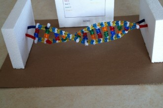 DNA Double Helix Science Project , 6 Double Helix Dna Project In Cell Category