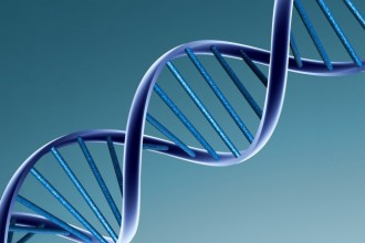 DNA Helix Wallpaper Pictures , 6 Dna Helix Wallpaper In Cell Category