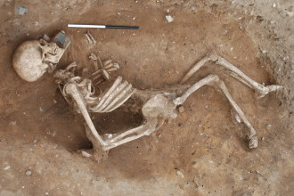 Giant Human Skeleton Photos From  Archaeological Discovery , 5 Giant Human Skeletons Photos In Skeleton Category