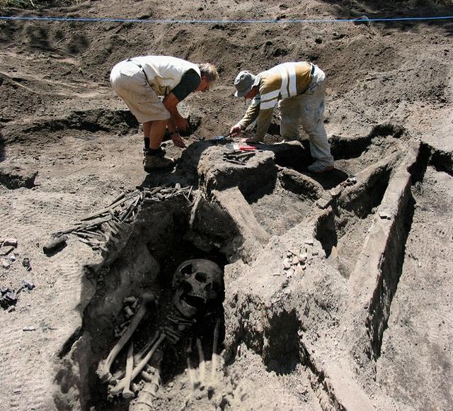 Skeleton , 5 Giant Human Skeletons Photos : Giant Skeletons