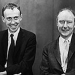 James Watson and Francis Crick , 5 Watson And Crick Dna Structure In Cell Category