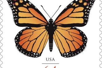 Monarch Butterflies Stamp 1 in Skeleton