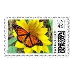Monarch Butterflies Stamp 4 , 7 Monarch Butterflies Stamp In Butterfly Category