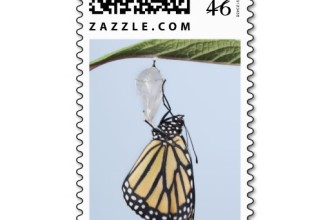 Monarch Butterflies Stamp  5 , 7 Monarch Butterflies Stamp In Butterfly Category