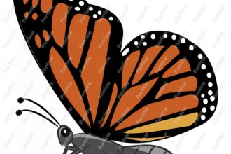 Monarch Butterfly Clip Art , 10 Monarch Butterfly Clip Art In Butterfly Category