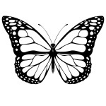 Monarch Butterfly Clip Art Free , 10 Monarch Butterfly Clip Art In Butterfly Category