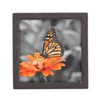 Monarch Butterfly Gift Boxes , 8 Monarch Butterfly Gift Items In Butterfly Category
