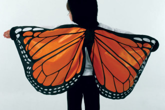 Monarch Butterfly Wings Costume in Dog
