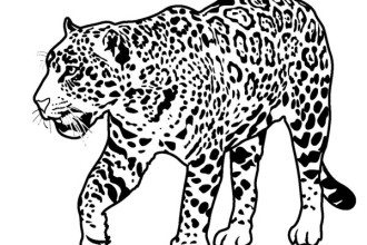 Printable Rainforest Animal Coloring , 7 Rainforest Animals Coloring Pages In Animal Category