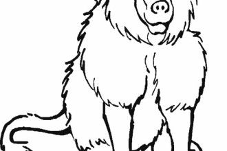RainForest Mammals Coloring Pages , 7 Rainforest Animals Coloring Pages In Animal Category
