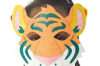 Rainforest Animal Colour in Masks in Primates