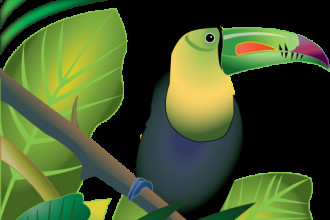 Toucan in Rainforest color in Dog