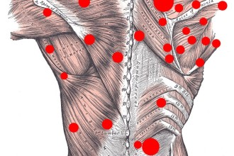 back muscle pain in pisces