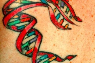 Dna Helix Tattoo Picture , 6 Dna Helix Tattoo In Cell Category