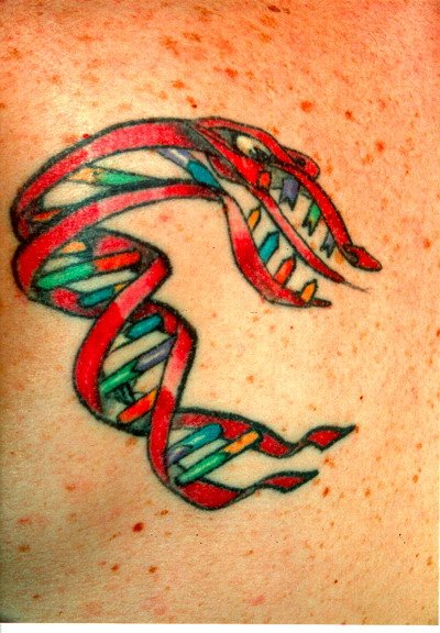 Cell , 6 Dna Helix Tattoo : Dna Helix Tattoo Picture