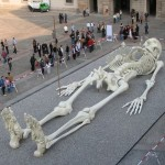 giant human skeleton image , 5 Giant Human Skeletons Photos In Skeleton Category