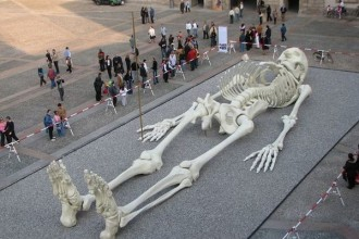giant human skeleton image in Birds