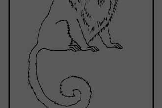 golden lion monkey coloring pages in Animal