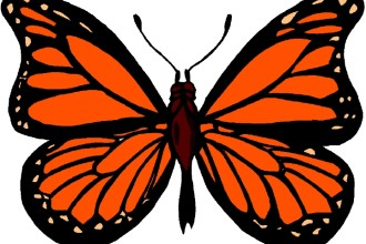 Monarch Butterfly Images , 10 Monarch Butterfly Clip Art In Butterfly Category