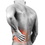 muscle pain in back , 8 Muscle Pain In Back In Muscles Category