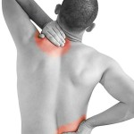 muscle pain in back 2 , 8 Muscle Pain In Back In Muscles Category