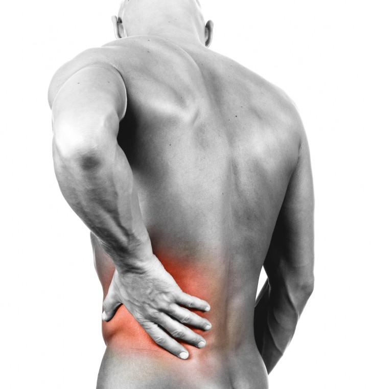 Muscles , 8 Muscle Pain In Back : Muscle Pain In Back