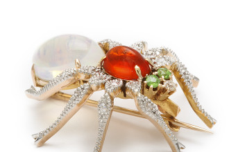 spider pin brooch in Birds
