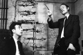watson and crick dna structure in Genetics