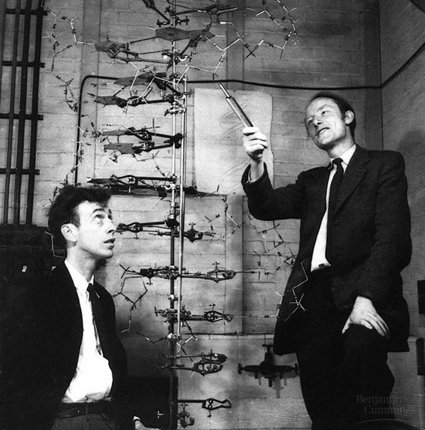 watson and crick dna structure