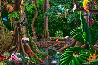 What Kind Of Animals Live In The Tropical Rainforest , 6 Kind Of Animals In The Tropical Rainforest In Animal Category