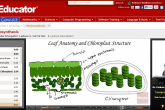 AP Biology Photosynthesis , 6 Online Ap Biology Course In Scientific data Category