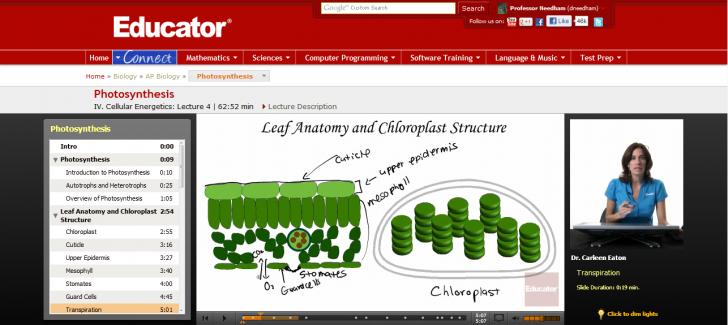 Scientific data , 6 Online Ap Biology Course : AP Biology Photosynthesis