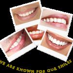 Aspen Leaf Dental , 4 Aspen Leaf Dental In Environment Category