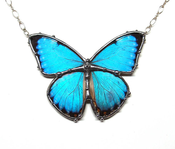 Butterfly , 7 Blue Morpho Butterfly Necklace : Blue Morpho Butterfly Necklace