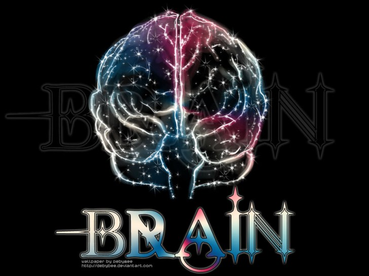 brain wallpaper - photo #33