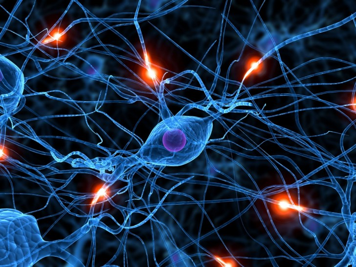 Brain , 5 Brains Synapse Neurons Wallpaper : Brain Synapse Wallpaper