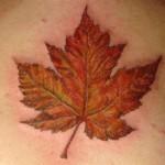 Canadian Maple Leaf Tattoo , 6 Maple Leaf Tattoos In Human Category