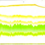 Chromatography Photosynthetic Pigments , 6 Leaf Pigment Chromatography In Scientific data Category