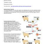Cloning Fact Sheet , 7 Learn Genetics Cloning In Genetics Category