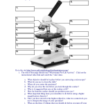 Compound Microscopes , 5 Parts Of The Microscope Quiz In Cell Category