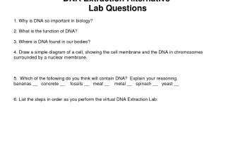 DNA extraction in Scientific data