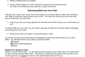 DNA Extraction Worksheet , 6 Why Is Dna Extraction Important In Genetics Category