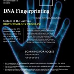 DNA fingerprinting project ideas , 5 Dna Fingerprinting Nova In Genetics Category