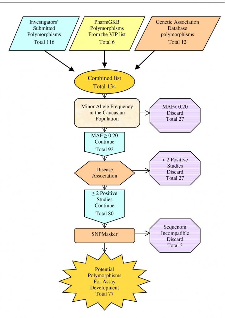 Genetics , 5 Dna Fingerprinting Nova : Dna Fingerprinting Steps