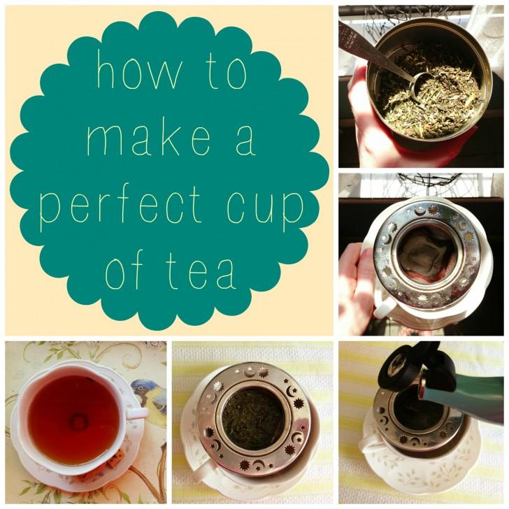 Plants , 5 Tea Bag Vs Loose Leaf : How To Make A Perfect Cup Of Tea