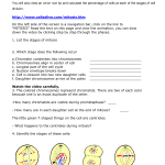 Key Meiosis Internet Lesson , 8 Meiosis Internet Lesson In Cell Category