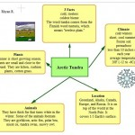 Kidspiration Organizer Tundra , 6 Tundra Biome Facts In Biome Category