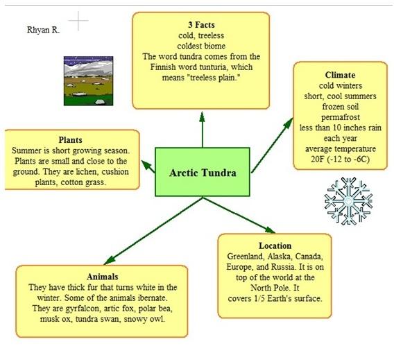 Biome , 6 Tundra Biome Facts : Kidspiration Organizer Tundra